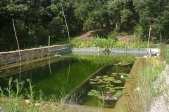 Llac natural. Projectes d'Aigua